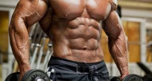 Наращиваем мышцы –– выполняем жиросжигание